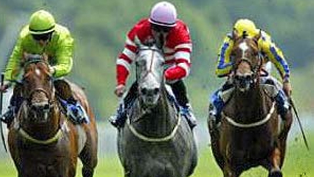 If you are into Horse Racing check this out