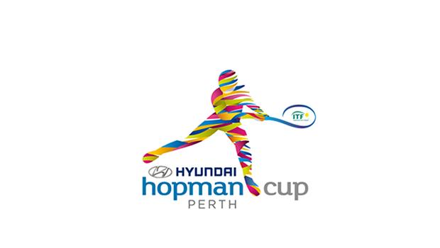 Hopmancup impressions