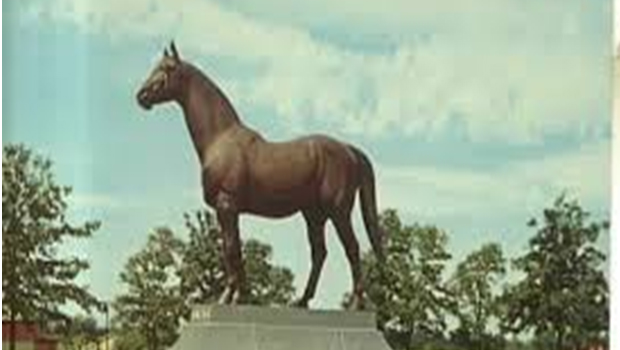 History of Man o' War