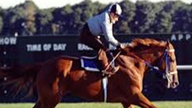 Secretariat race horse