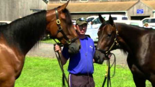 Horse racing: Filly gets a chance in Hambletonian