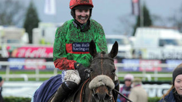 Sky Bet Chase horse
