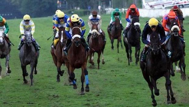 Forbidden horse racing