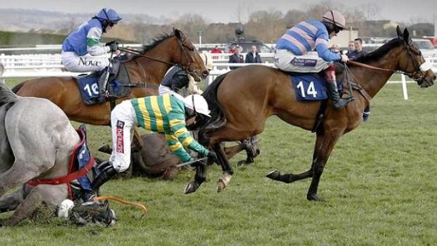 Horse Rasing news