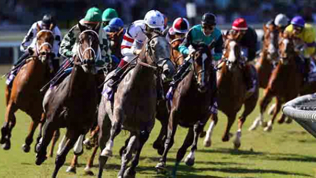 Grand National Race facts