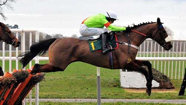 NEW DIFFUSER HORSE