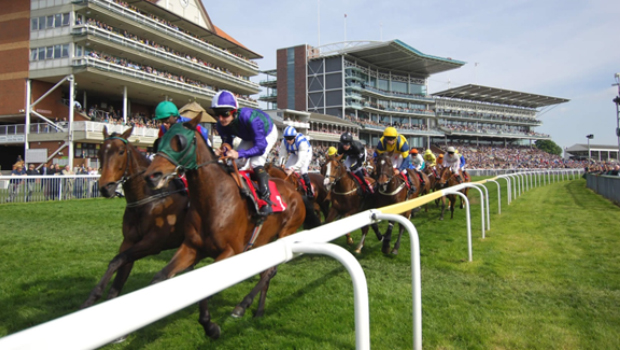 Northwest Horse Racing Review
