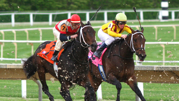 horse racing betting boom on the market