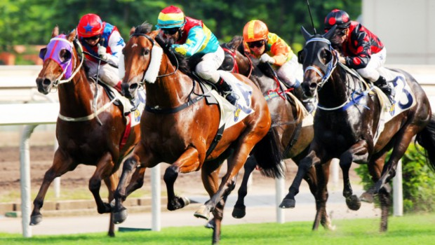 China's interest on horse racing makes New Zealand to win