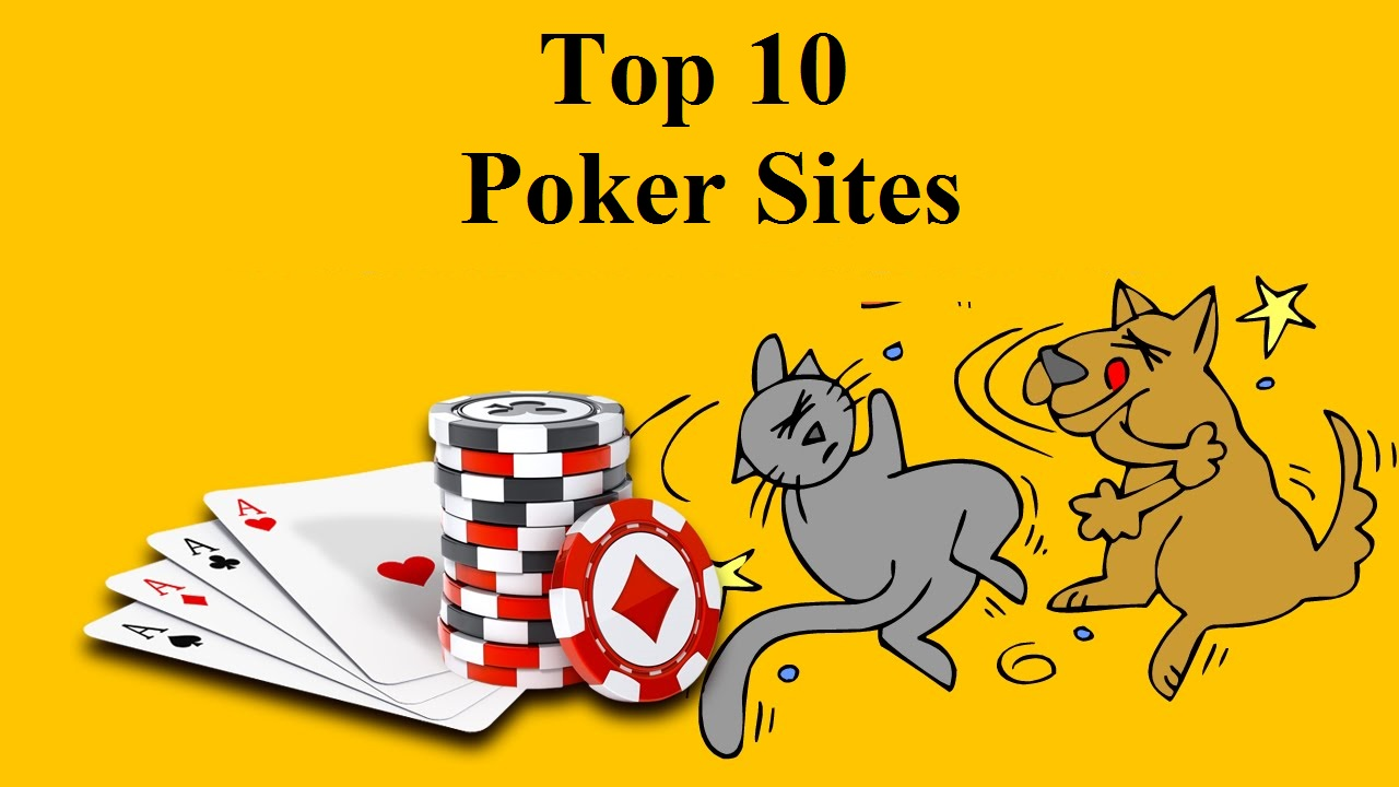 What to look for when Searching for the Best Online Casino