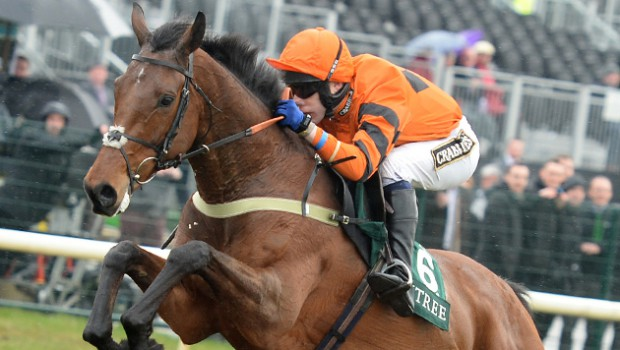 Thistlecrack set for Gold Cup glory at the first time of asking?
