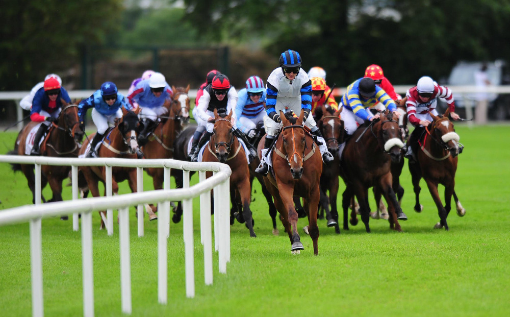 Horse Racing Gambling