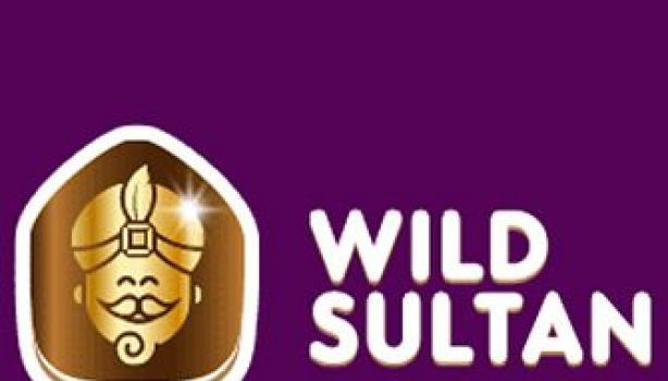 Wild Sultan Online Casino Starts New Year in Celebration