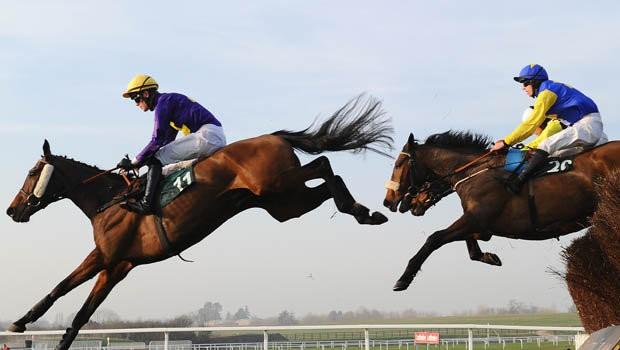horse racing Cheltenham