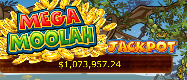 1.6 million dollars won with the Mega Moolah jackpot