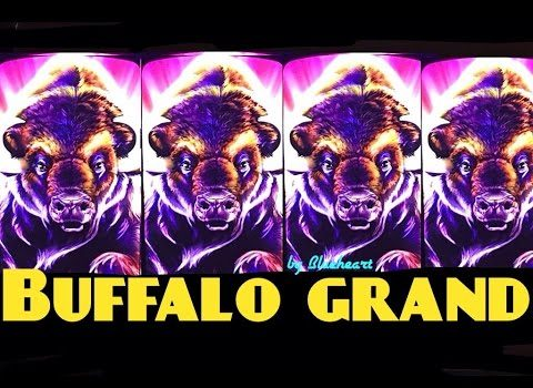 Back on the four jackpots obtained in less than two weeks on the Buffalo Grand slot