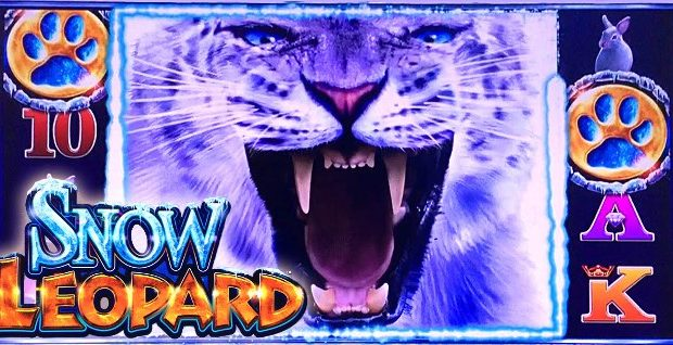 Play Snow Leopard now