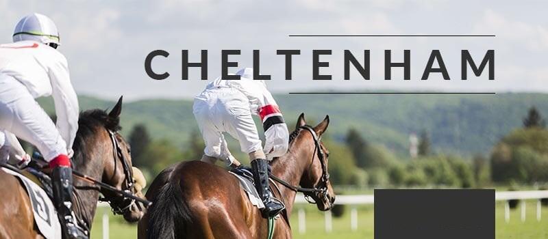 What is the Cheltenham Festival?