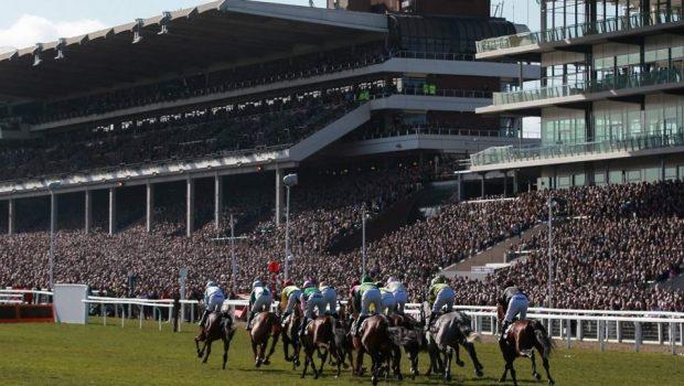 2018 Horse racing Cheltenham