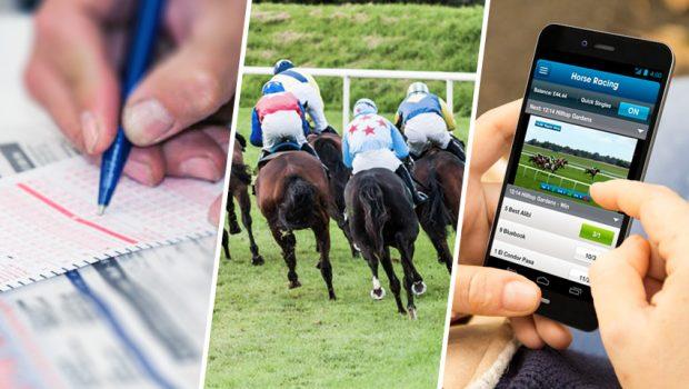 Horse Racing Betting For Gambler