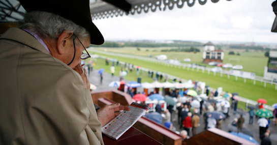 Horse Racing Betting Business
