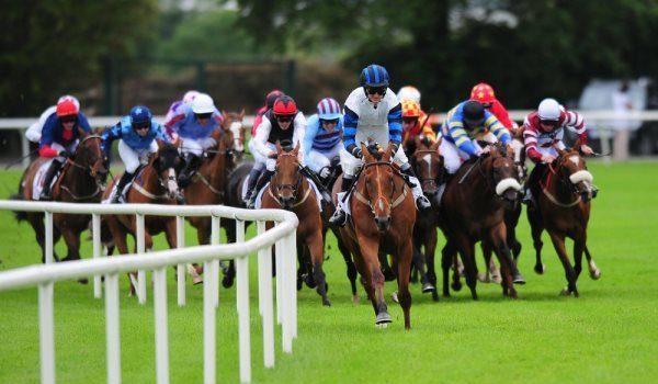 Horse Racing Selection
