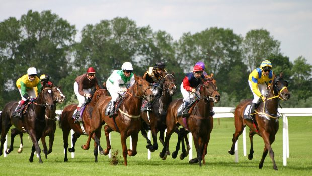 What to Expect From UK Horse Racing?