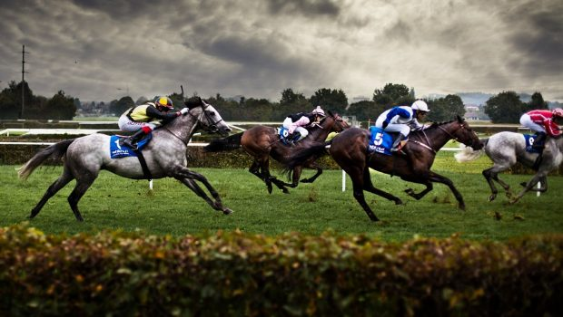 Counsel to location of venture in Horse Racing