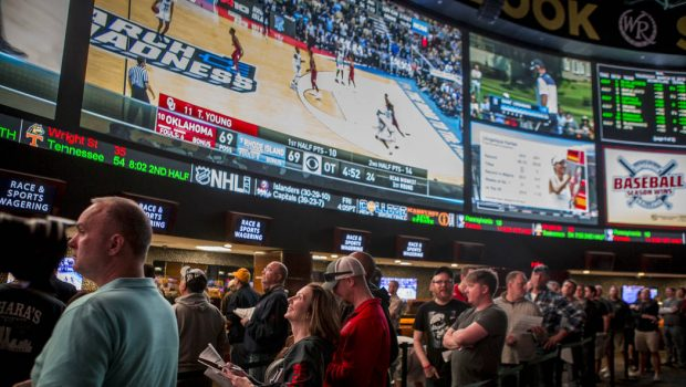 What you'll want to find out about sports betting