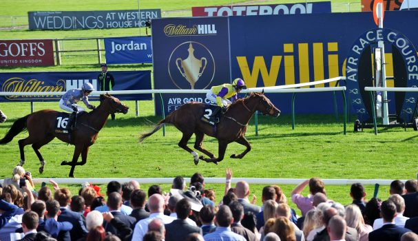 Son Of rest 8/1 ordinary for William Hill Ayr Gold Cup