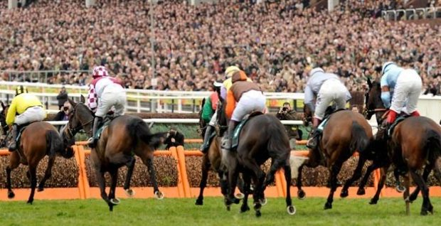 Cheltenham 2019 – cash-In On These value Picks