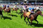 Bookmaker William hill chooses train firm to ferry horse-racing VIPs