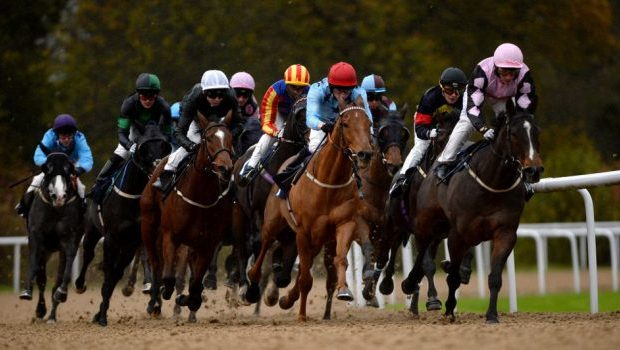 Horseracing Betting Tips