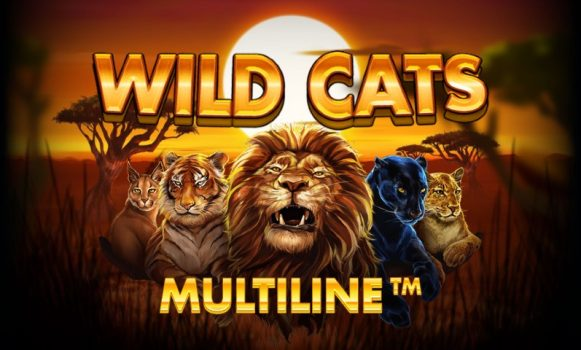 Wild Cats Multiline Game Review