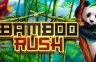 Bamboo Rush Slot Game Review