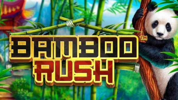 Bamboo Rush Slot Game Review