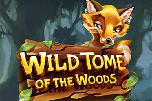Wild Tome of the Woods Slot Game Review