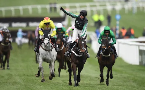 Cheltenham horse racing 2020 tips