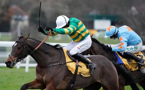 Cheltenham horse racing betting odds 2020