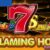 Flaming Hot Extreme Casino Game Review