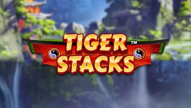 Tiger Stacks Slot Review