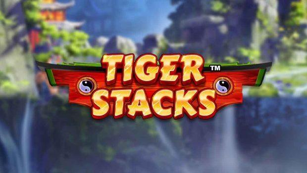 Tiger Stacks Slot Review