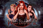 Wild Blood II Casino Slot Game Review