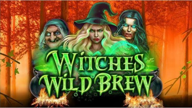 Witches Wild Brew Game Review