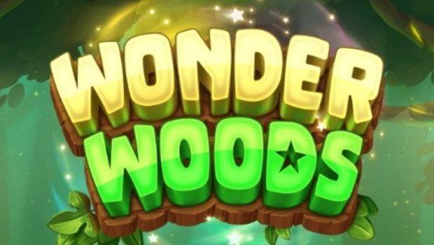 Wonder Woods Casino Slot Review