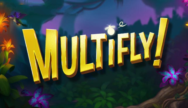 Multifly Casino Game Review