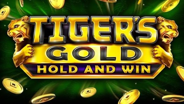 Tiger Gold Hold and Win Casino Game Review
