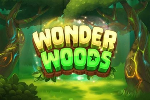 Wonder Woods Game Review