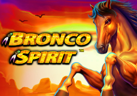 Bronco Spirit Casino Game Review
