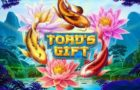 Toad's Gift Casino Game Review